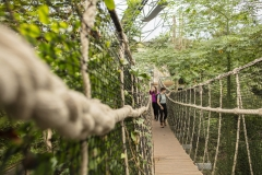 University of Plymouth students visit The Eden Project